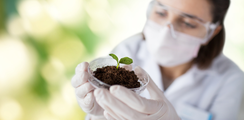 Soil Science and Plant Nutrition