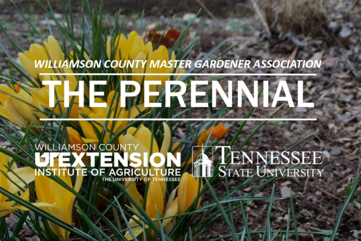 Williamson County Master Gardeners Association
