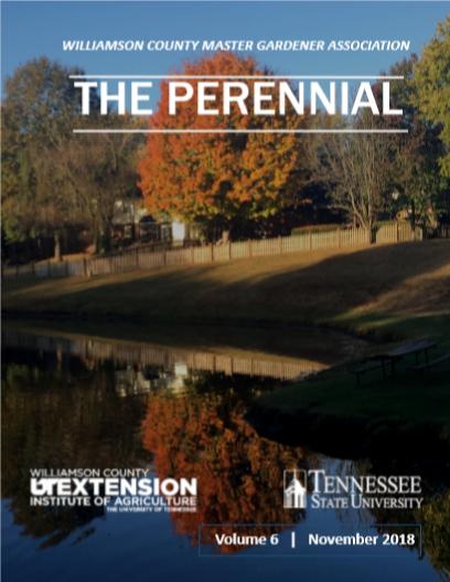 2018 November Perennial